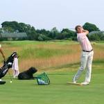 Complete golf swing motion (by Tom Patri)